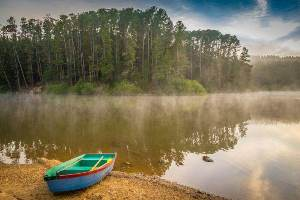 Mist over St Georges Lake
